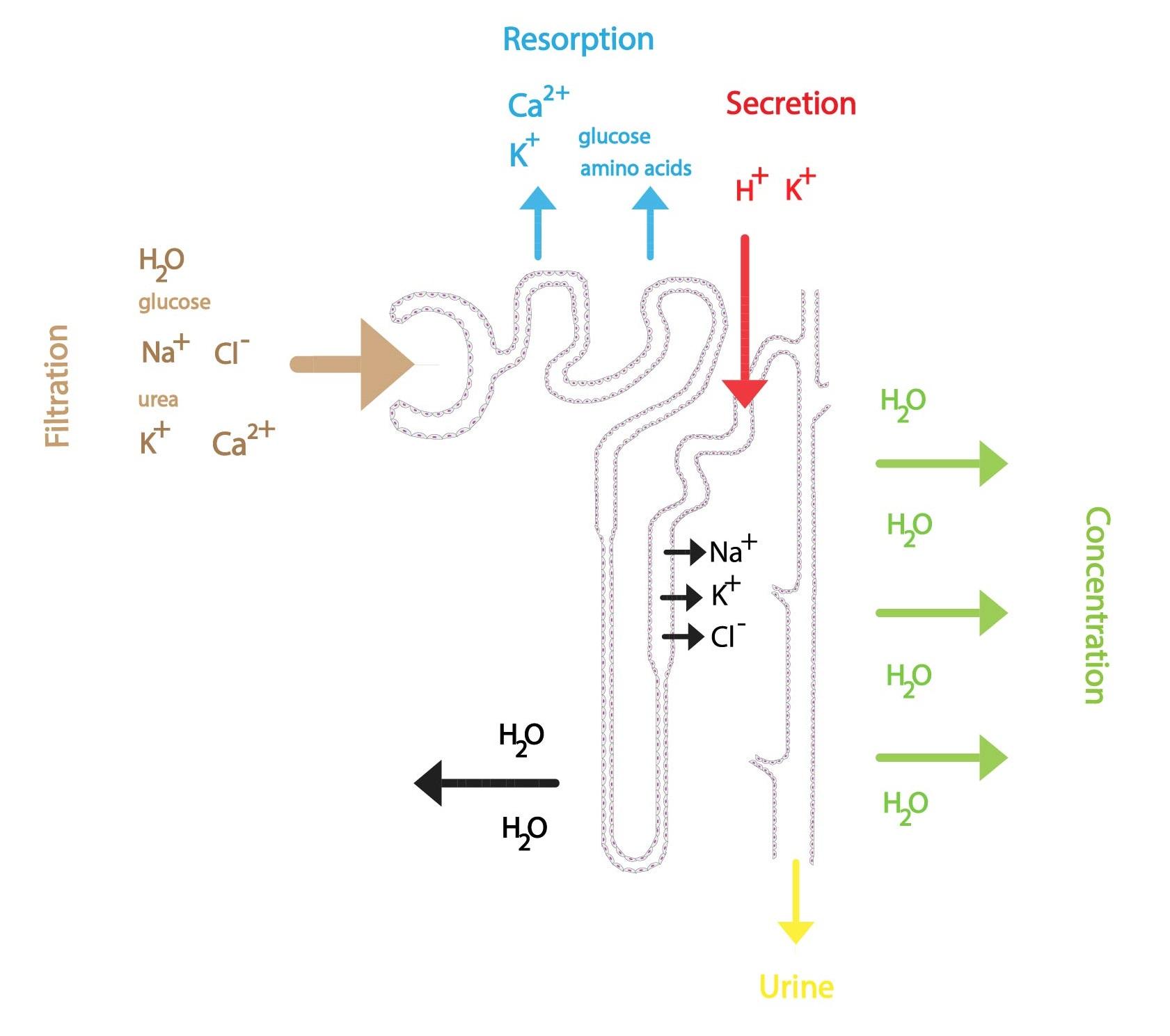 Souhrn procesů tvorby moci ENG-01