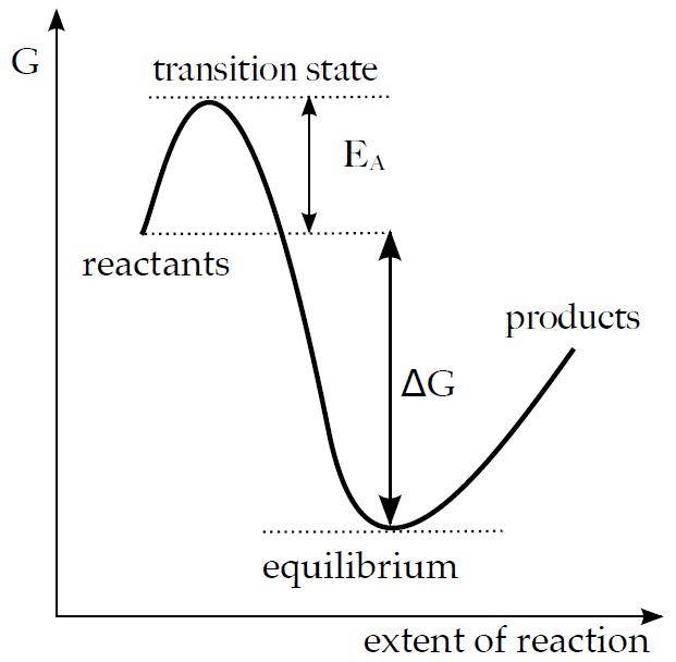 aktivacni enegie bez enzymu