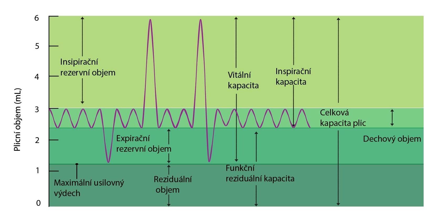 objemy a kapacity plic-01
