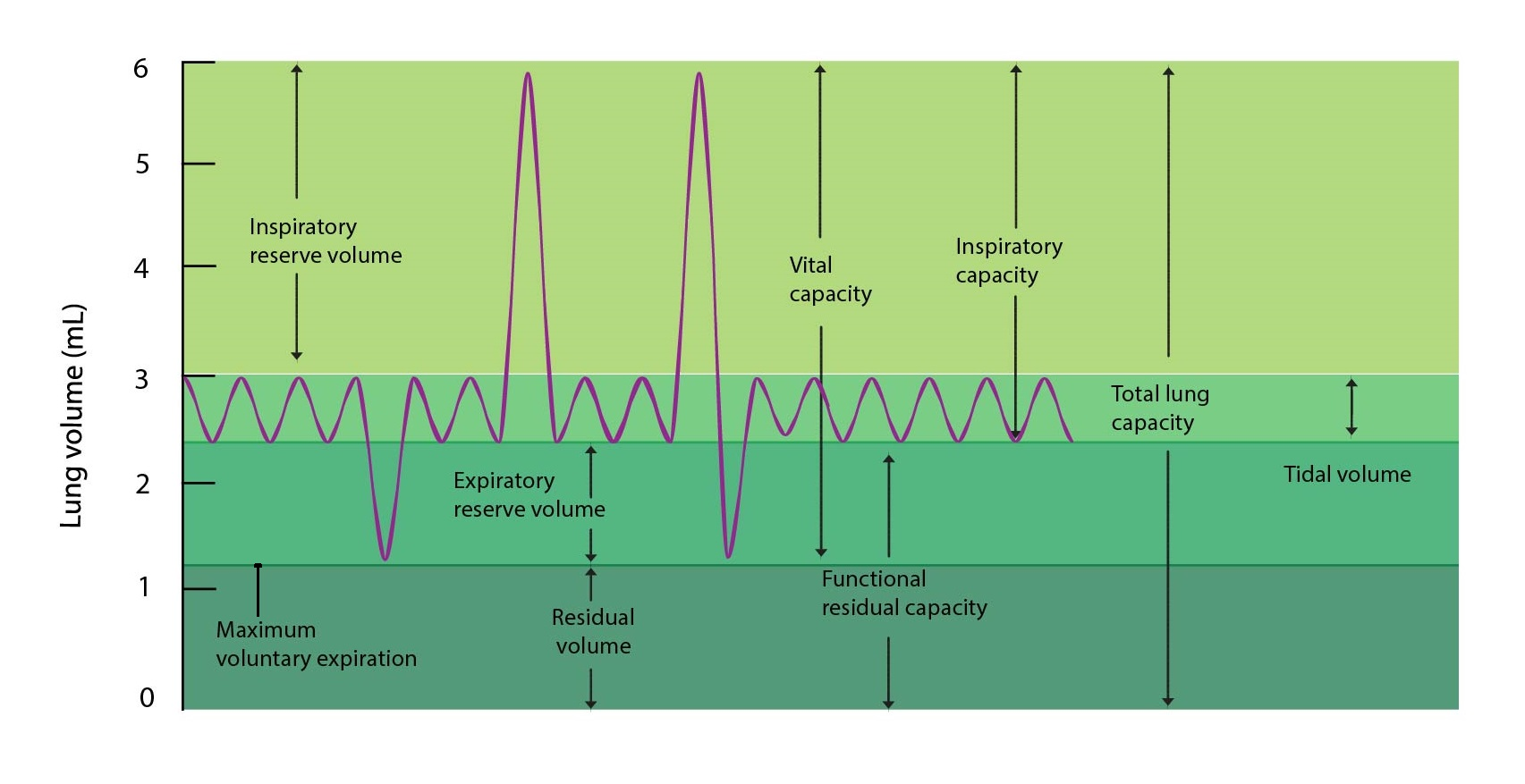 objemy a kapacity plic ENG-01
